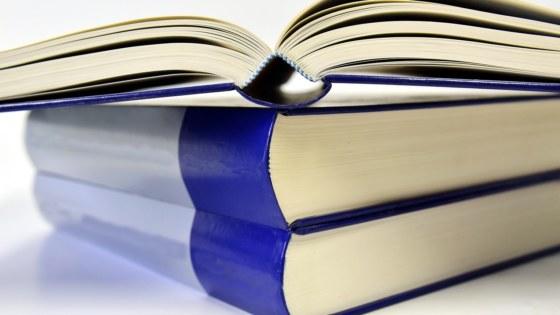 boeken-dossier-archief-Pixabay-ulleo