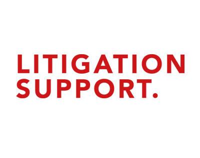 logo_Litigation_support