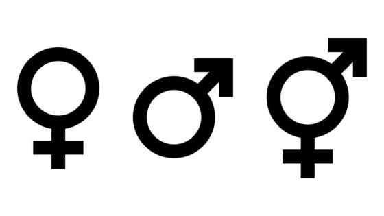 genderneutraal 2
